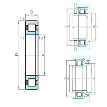 Original SKF Cylindrical Roller Bearings NUP29/1060 PSL