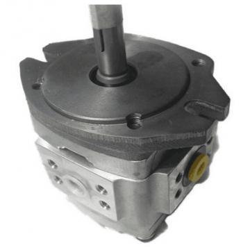 NACHI Gear pump IPH-6B-100-LT-11