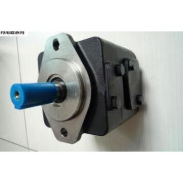 Dansion vane pump T6DP-017-3R03