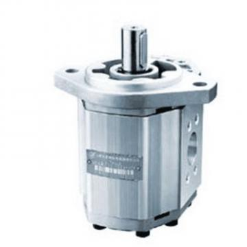 CBW-F310-CFP Gear Pump