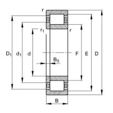 Original SKF Cylindrical Roller Bearings NUP2206-E-TVP2 FAG