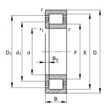 Original SKF Cylindrical Roller Bearings NUP2207-E-TVP2 FAG