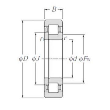 Original SKF Cylindrical Roller Bearings NUP2206E NTN
