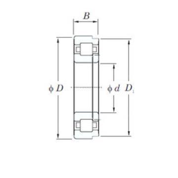Original SKF Cylindrical Roller Bearings NUP2207 KOYO