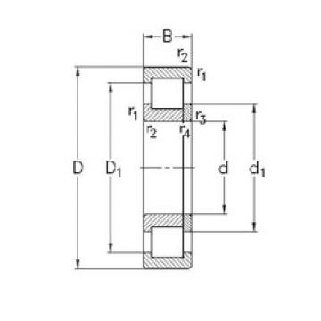Original SKF Cylindrical Roller Bearings NUP2206-E-TVP3 NKE