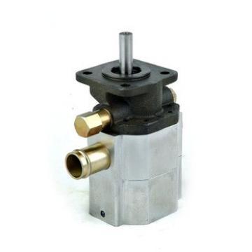 hydraulic axial piston motor