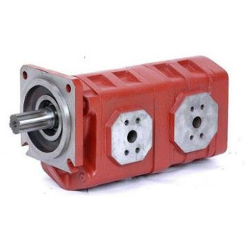 CBGJ3160 double cast iron pump /wheel loader gear pump