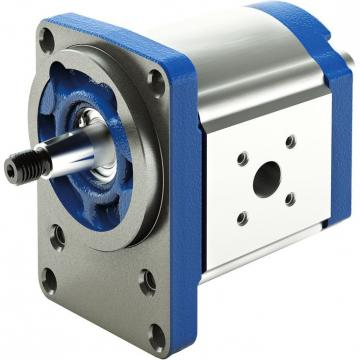 Original Rexroth AZPF series Gear Pump R919000271	AZPFFF-22-022/022/016LCB202020KB-S9996